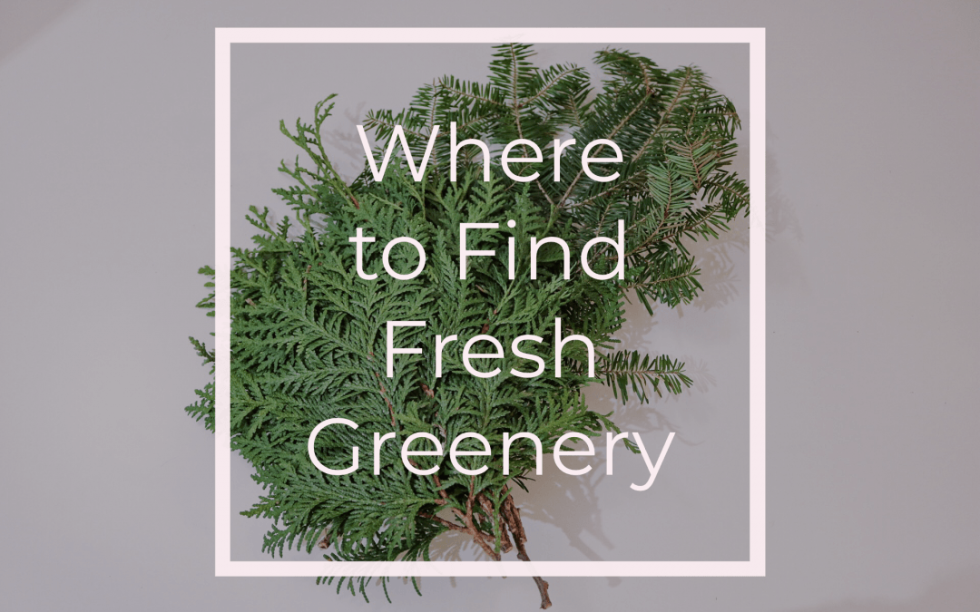 Where to Find Fresh Greenery