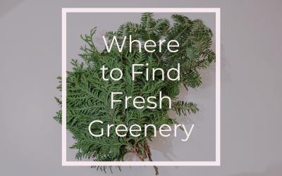Where to Find Fresh Greenery