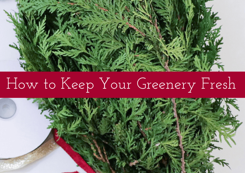 How to Keep Your Greenery Fresh
