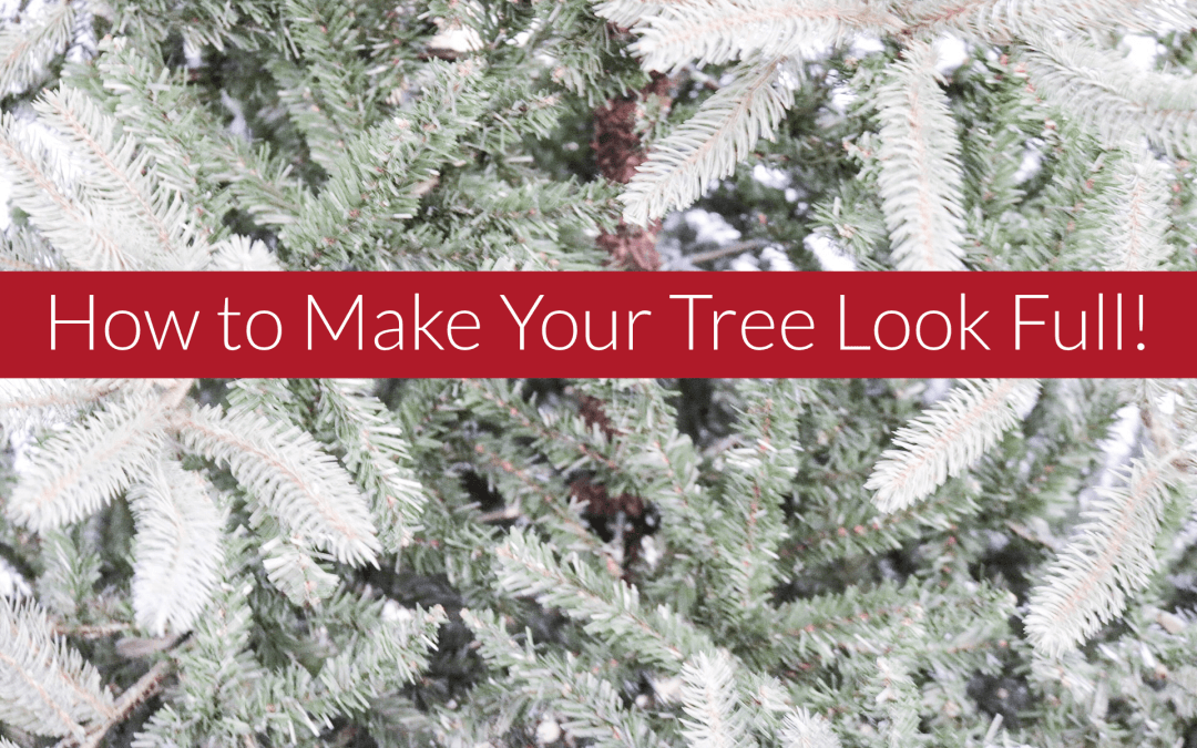 4 Ways to Make Any Tree Look Full